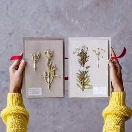 flowerpress_6